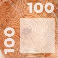 Брус 100-100