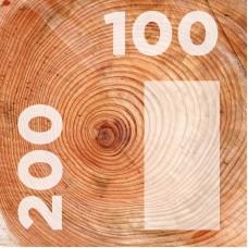 Брус 100-200