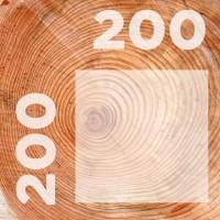 Брус 200-200