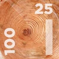 Доска обрезная 25 на 100