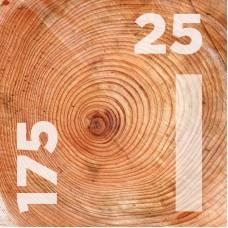 Доска обрезная 25 на 175