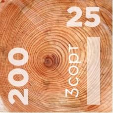 Доска обрезная 25 на 200 сорт 3