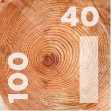 Доска обрезная 40 на 100